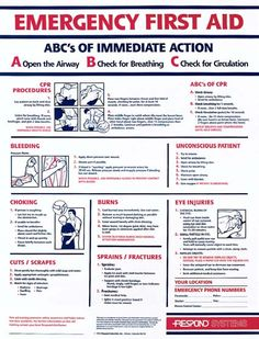 red cross first responder manual